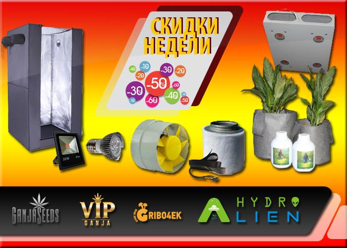Знижки жовтня від GanjaSeeds - на всі сорти 40%!